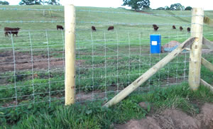 Wire stock fencing